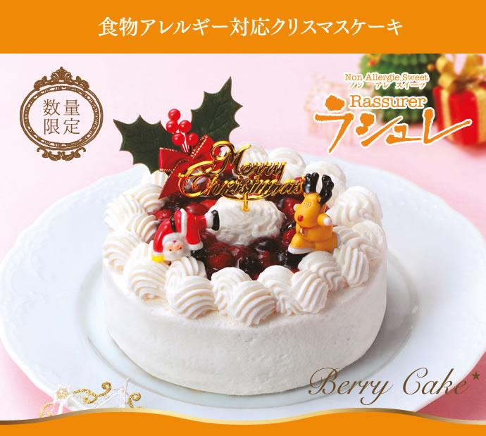 食物アレルギー対応クリスマスケーキ